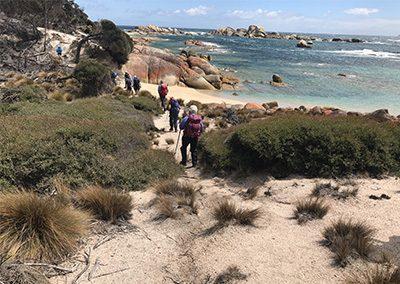 Flinders-Island-(2)